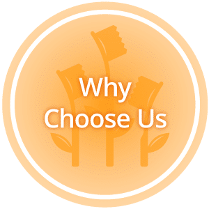 Why Choose Us Hover 1 Horizontal San Ramon Children's Dentistry and Orthodontics in San Ramon, CA